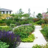 rijk bloeiende tuin Leiden