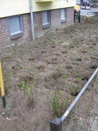 plantwerk woningbouwvereniging