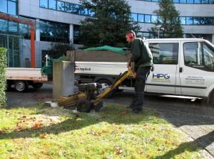 boomstobbe frezen na verwijderen boom