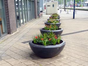 plantenbakken met wisselbeplanting