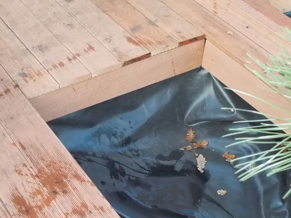 japanse tuin zaandam hpg hoveniers