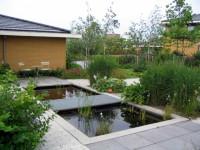 moderne vijver, tuin Leiden