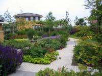 bloeiende plantenborders, tuinaanleg Leiden