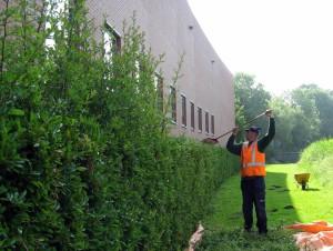 tuinonderhoud vastgoedbeheerders