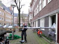 boom in tuin Amsterdam