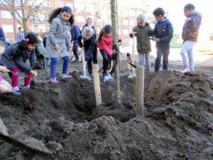 boomplantdag Beverwijk