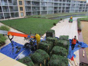 transport beplanting voor aanleg daktuin leiden.png